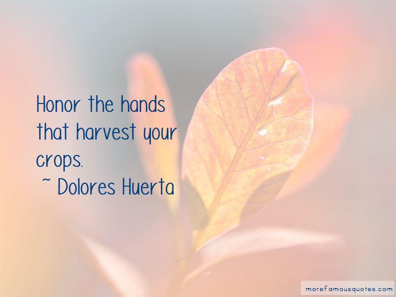 Dolores Huerta Quotes Pictures 2