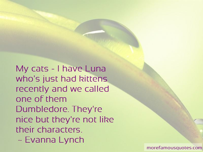 Evanna Lynch Quotes Pictures 4