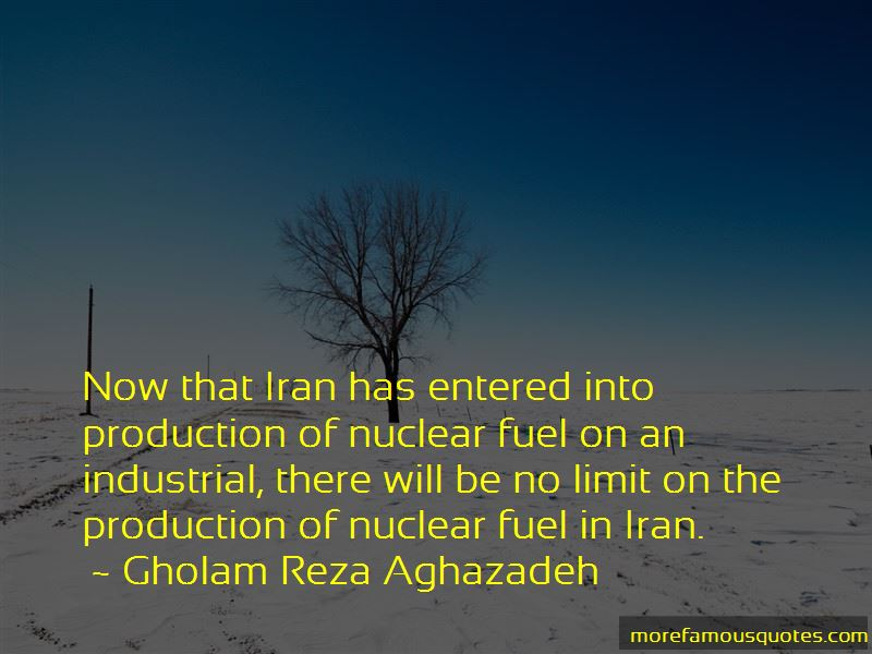 Gholam Reza Aghazadeh Quotes