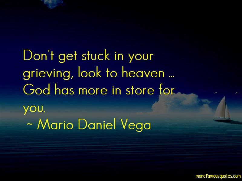 Mario Daniel Vega Quotes