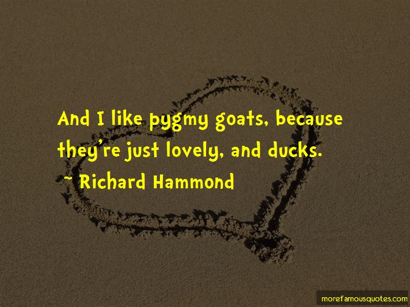 Richard Hammond Quotes Pictures 3