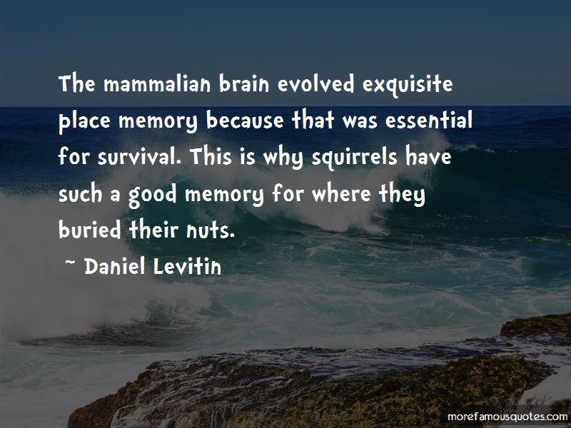Daniel Levitin Quotes Pictures 4