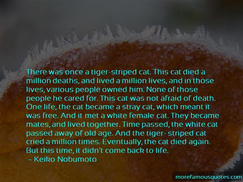 Keiko Nobumoto Quotes Pictures 2