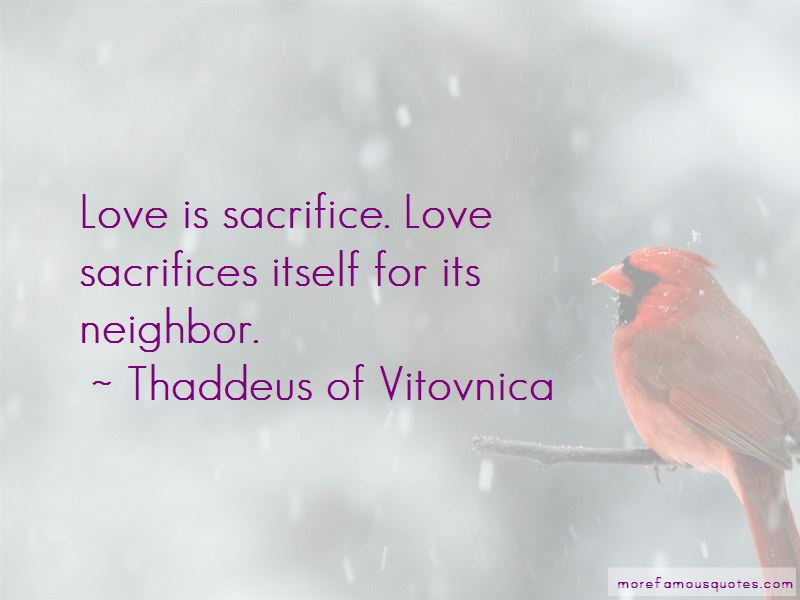 Thaddeus Of Vitovnica Quotes Pictures 2