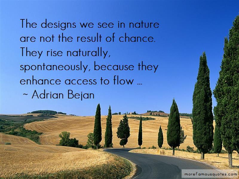 Adrian Bejan Quotes