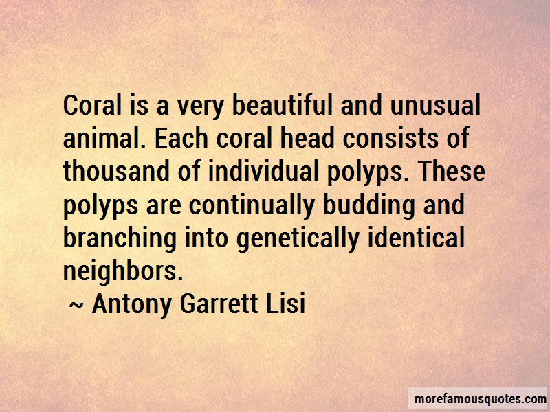 Antony Garrett Lisi Quotes Pictures 3