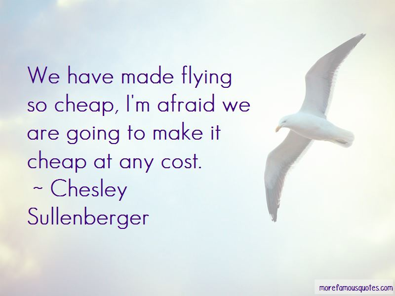 Chesley Sullenberger Quotes Pictures 2