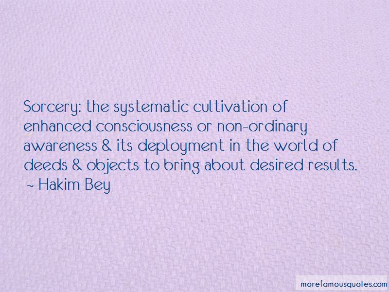 Hakim Bey Quotes Pictures 2