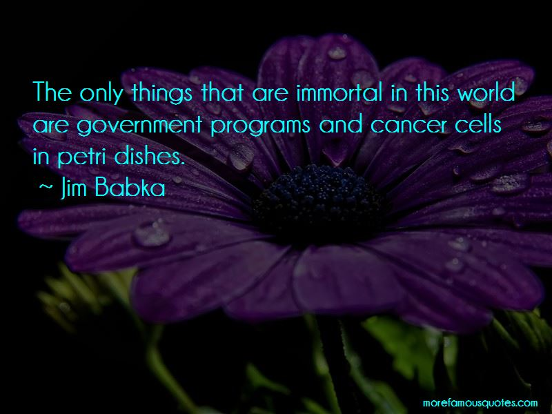Jim Babka Quotes Pictures 2