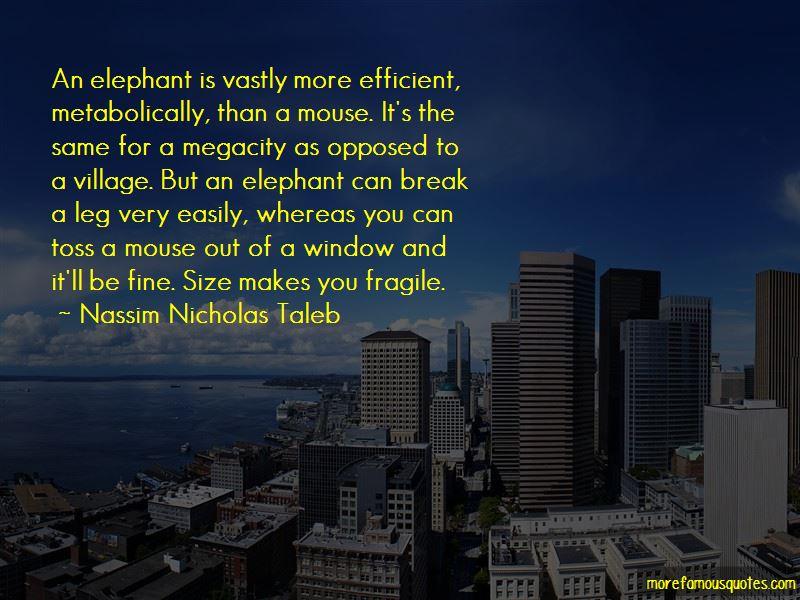 Nassim Nicholas Taleb Quotes Pictures 2