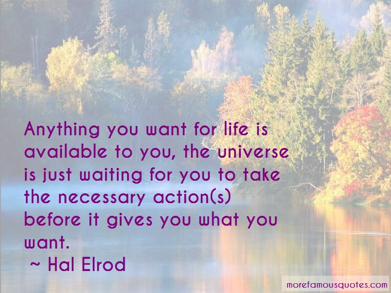 Hal Elrod Quotes Pictures 3