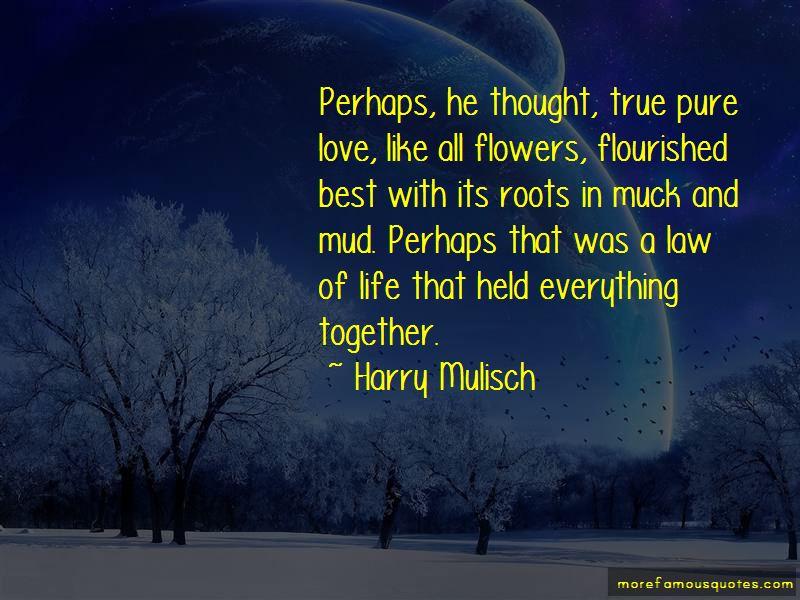 Harry Mulisch Quotes Pictures 4