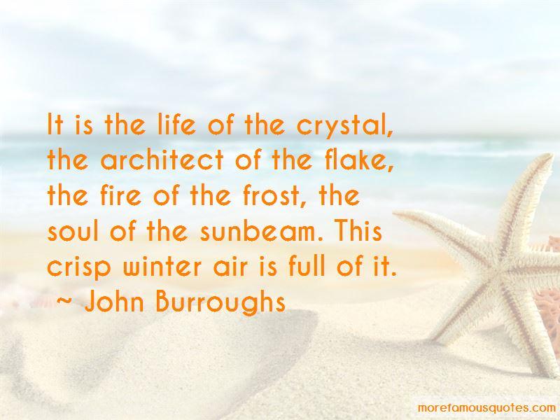 John Burroughs Quotes