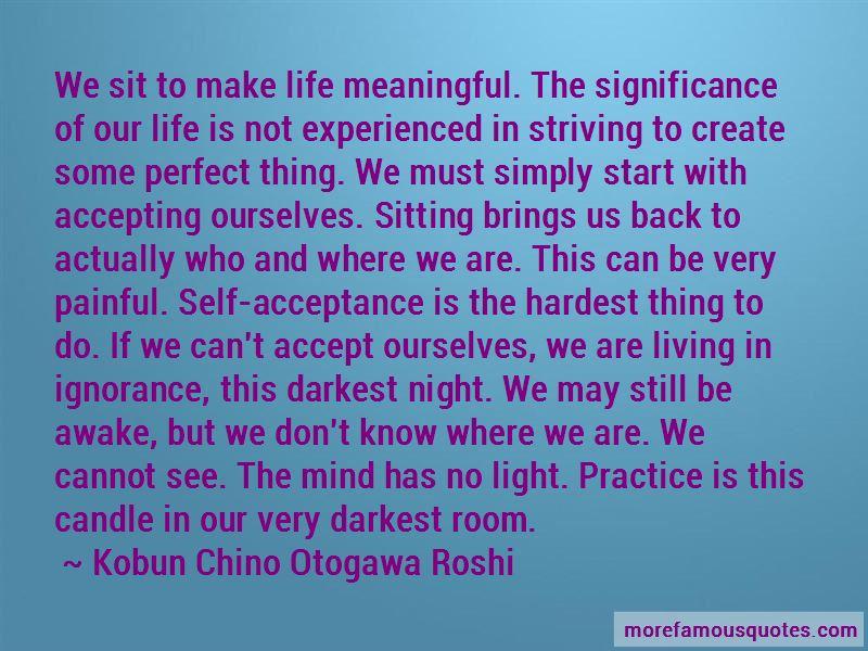 Kobun Chino Otogawa Roshi Quotes