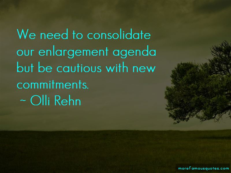 Olli Rehn Quotes Pictures 2
