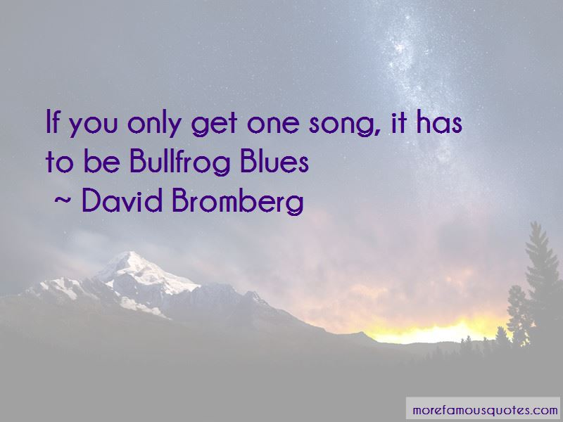 David Bromberg Quotes Pictures 2
