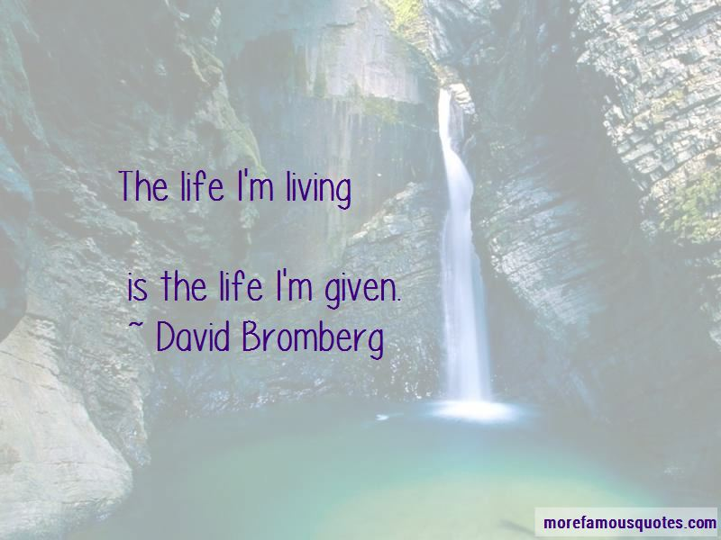 David Bromberg Quotes Pictures 4