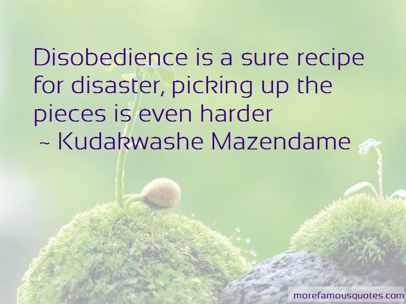 Kudakwashe Mazendame Quotes