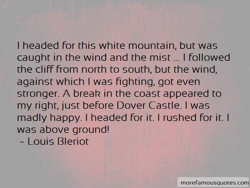 Louis Bleriot Quotes Pictures 3