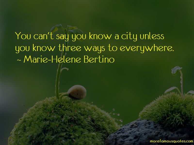 Marie-Helene Bertino Quotes Pictures 3