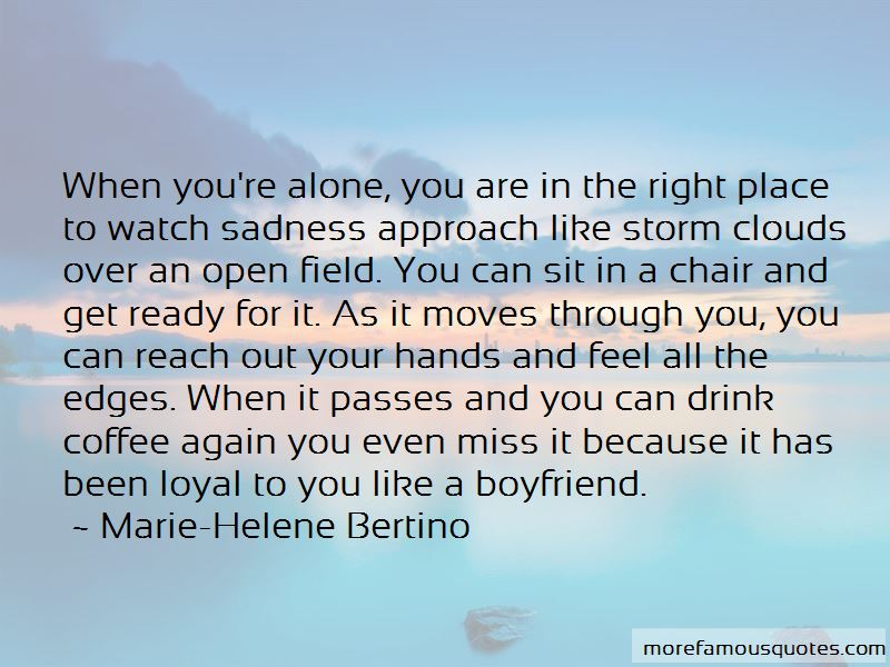 Marie-Helene Bertino Quotes