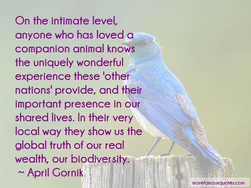 April Gornik Quotes