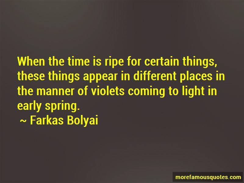 Farkas Bolyai Quotes Pictures 3