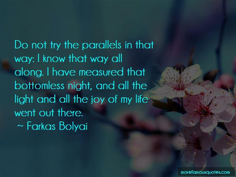 Farkas Bolyai Quotes