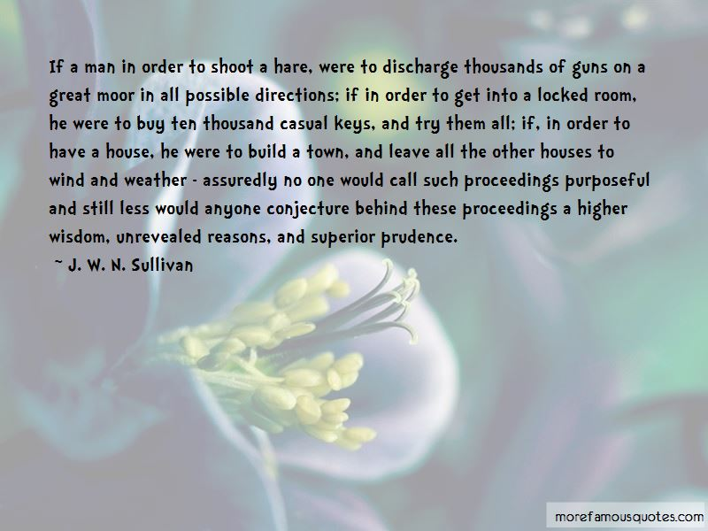 J. W. N. Sullivan Quotes Pictures 4