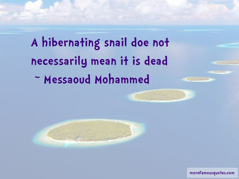 Messaoud Mohammed Quotes Pictures 2