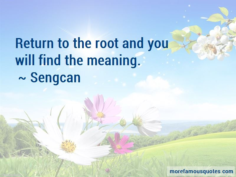 Sengcan Quotes Pictures 2