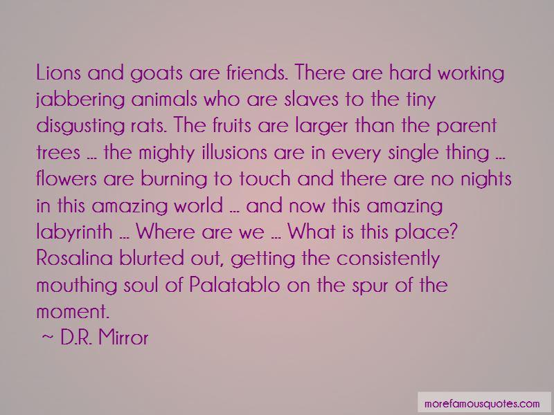 D.R. Mirror Quotes