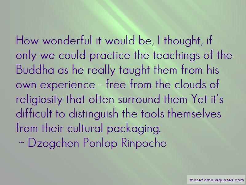Dzogchen Ponlop Rinpoche Quotes Pictures 2