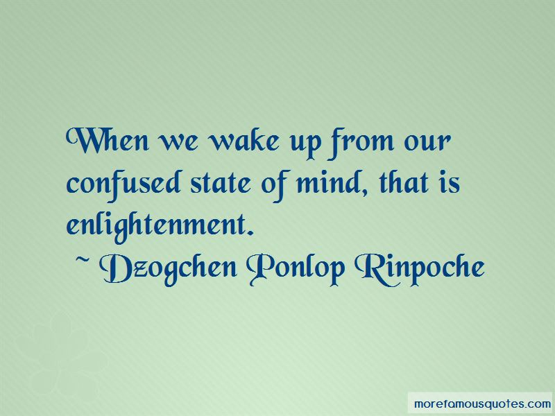Dzogchen Ponlop Rinpoche Quotes Pictures 4