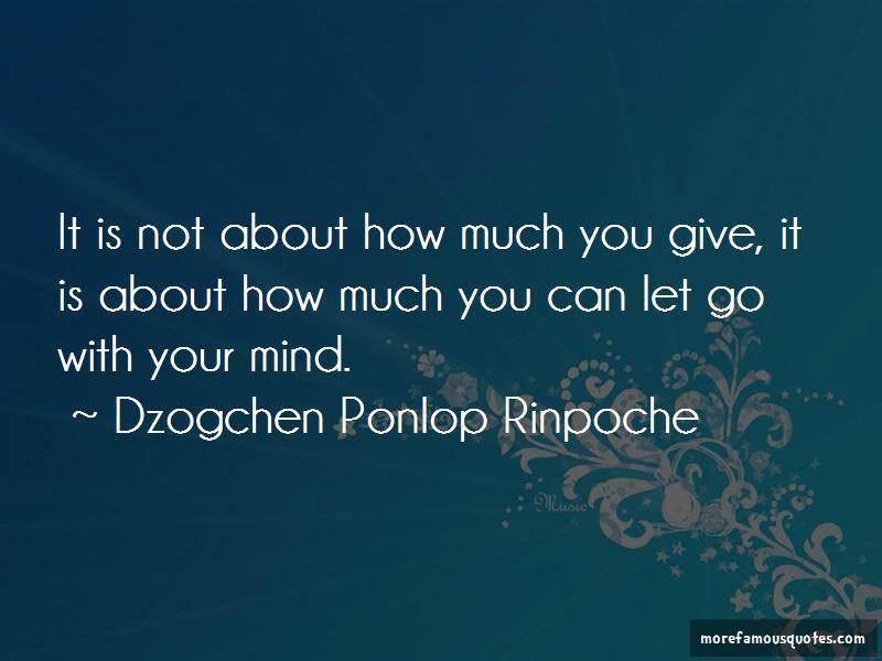 Dzogchen Ponlop Rinpoche Quotes