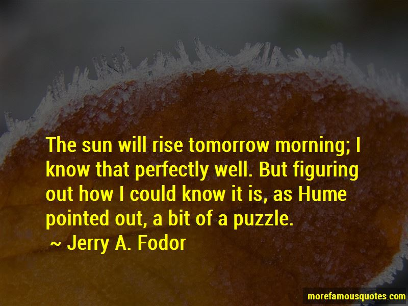 Jerry A. Fodor Quotes Pictures 4