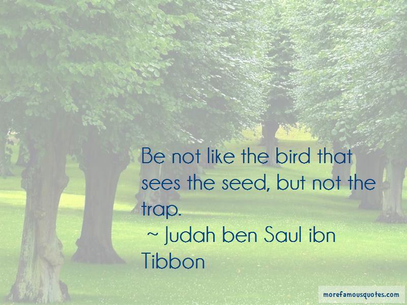 Judah Ben Saul Ibn Tibbon Quotes Pictures 3