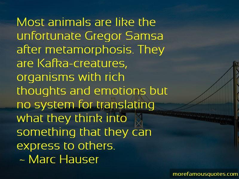 Marc Hauser Quotes
