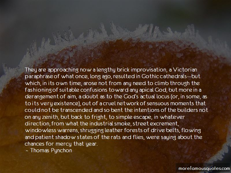 Thomas Pynchon Quotes Pictures 4