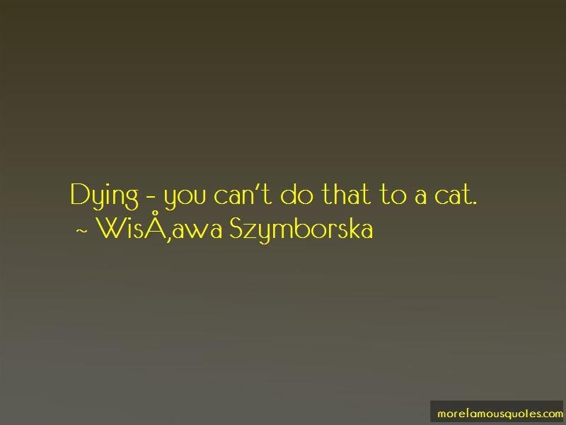 Wisława Szymborska Quotes Pictures 2