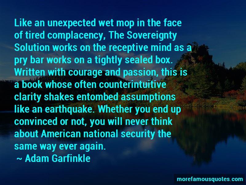 Adam Garfinkle Quotes