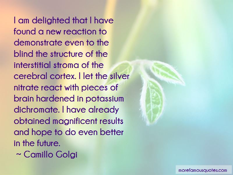 Camillo Golgi Quotes