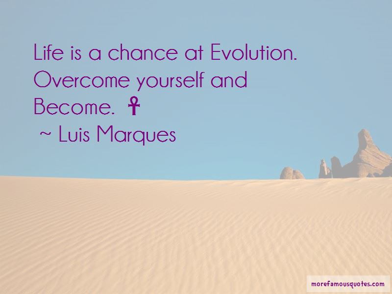 Luis Marques Quotes Pictures 4