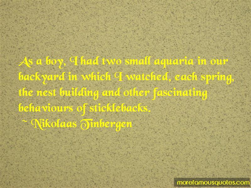 Nikolaas Tinbergen Quotes Pictures 3