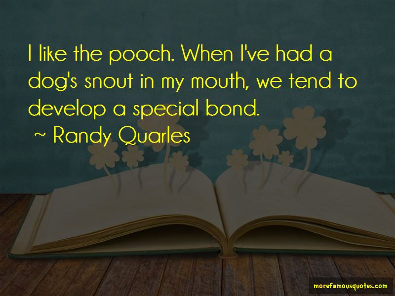 Randy Quarles Quotes Pictures 3