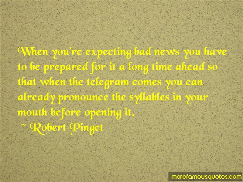 Robert Pinget Quotes