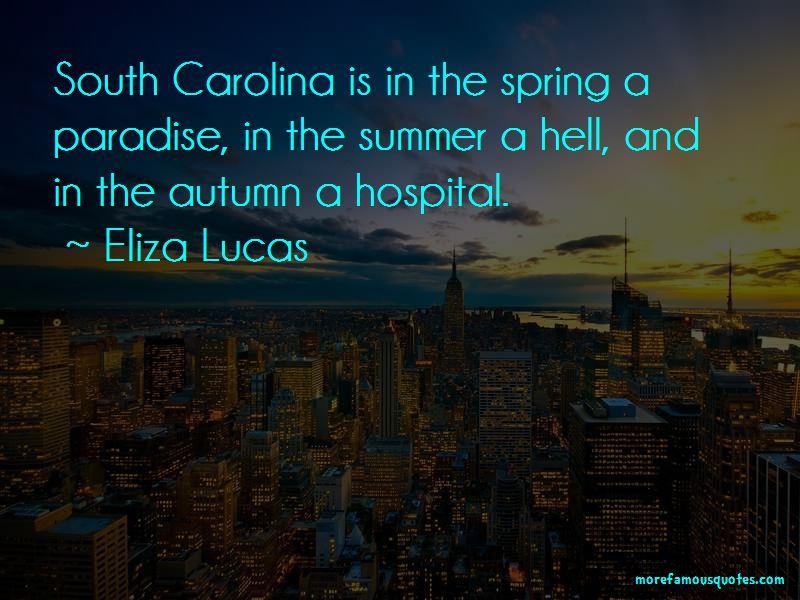 Eliza Lucas Quotes Pictures 2