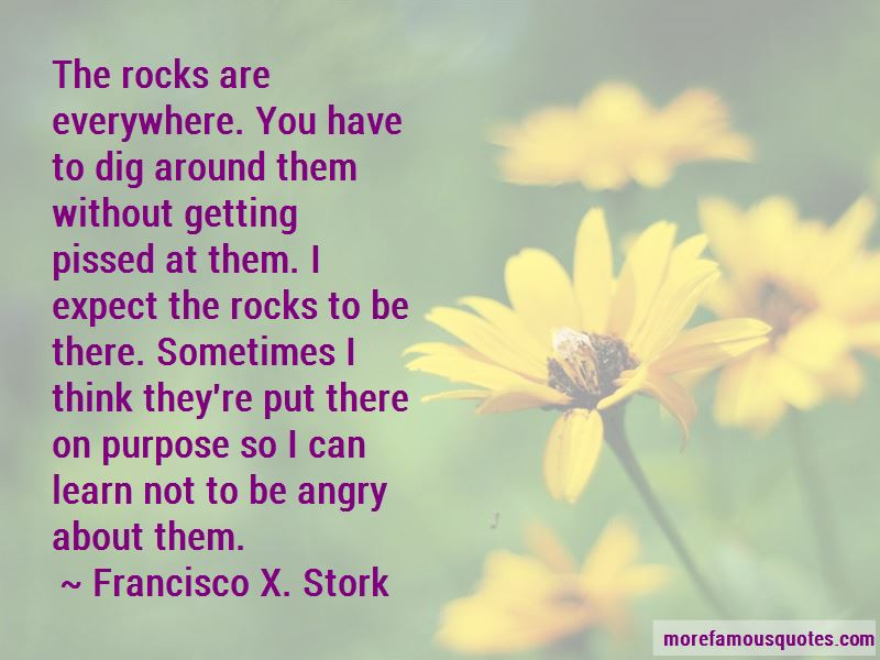 Francisco X. Stork Quotes Pictures 4