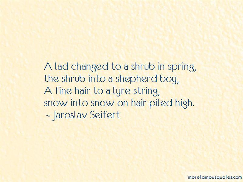 Jaroslav Seifert Quotes Pictures 2