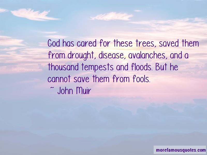 John Muir Quotes Pictures 2
